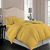 Comforter Striped 100% Egyptian Cotton Hypoallergenic 1200 Thread Count 1 Piece Down Alternative Comforter 600 GSM Microfiber Fill Heavy Weight By Kotton Culture (Queen / Full, Gold)