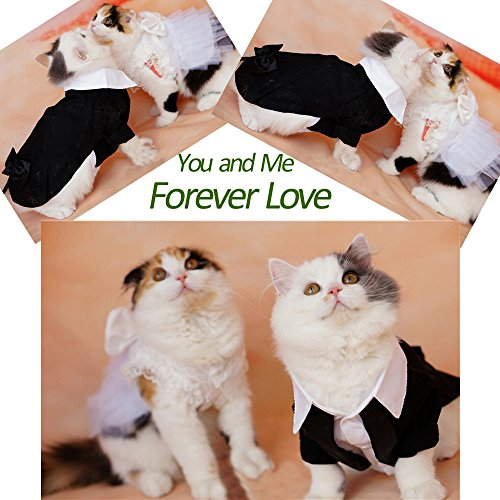 iPet-Handsome-Prince-Cat-Bridegroom-Wedding-Tuxedo-Faux-Twinset-Design-Small-Boy-Dog-Formal-Attire-Doggy-Party-Wear-Puppy-Birthday-Outfit-Doggie-Photo-Apparel-with-Buttons-Holiday-Fabric-Clothes-Hallo