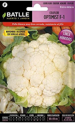Semillas Hortícolas - Coliflor Grande Navidad (Dic-Ene) - Batlle ...