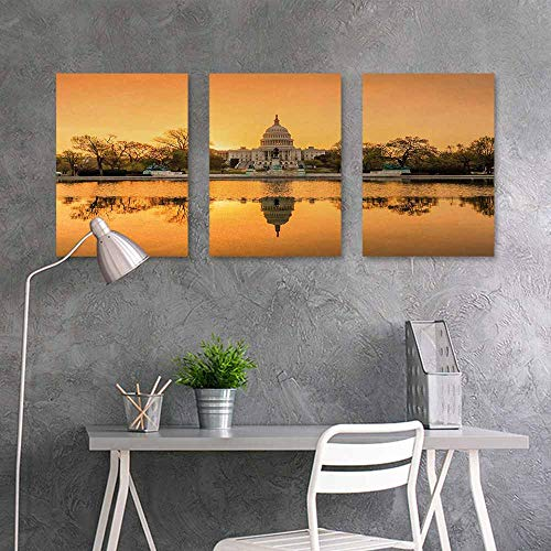 BE.SUN Canvas Print Artwork,United States,Washington DC American Capital City White House Above The Lake Landscape,Easy Care Oil Painting 3 Panels,24x35inchx3pcs,Apricot Ginger (Best Korean Restaurant In Dc)