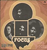 hocus pocus / sylvia 45 rpm single