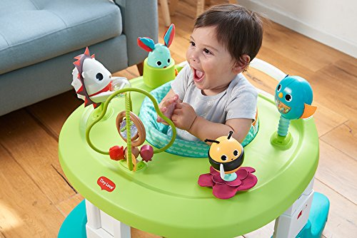 Tiny Love Meadow Days Here I Grow 4-in-1 Baby Walker and Mobile Activity Center by Tiny Love (Image #3)