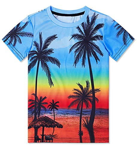 Teen Boys Tees Shirts Girls Tie Dye Short Sleeve Crewneck Tee T-Shirts 3D Printed Coconut Tree Shirt Clothing Birthday Shirts Summer Tops for 14-16 Years