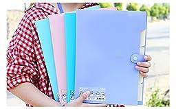 YooFun Accordion Expanding File Folder , 5-Pockets,A4 Size, Snap Button (purple)
