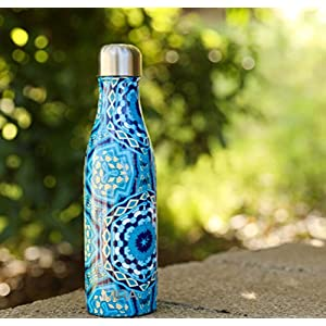 MIRA Double Walled Stainless Steel Cola Shape Water Bottle, 17-Ounce - Hexagon