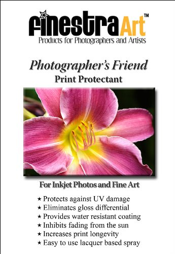 Finestra Art Inkjet Spray Protectant Solvent/Lacquer Based [Office Product] by Finestra Art