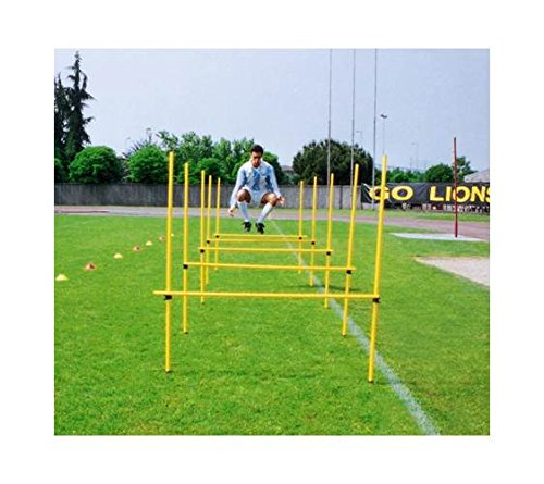 Goal Sporting Goods Outdoor Adjustable Agility Hurdles w Poles & Clips Set by Goal Sporting Goods (Image #1)