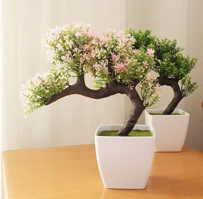 Flowersmagnate Wine Cabinet Decoration Decoration Ideas Living Room Tv Cabinet Home Office Small Bonsai New Year Decoration Flower Pot Baby Bonsai Pine 7th Amazon Co Uk Kitchen Home