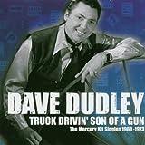 Truck Drivin Son of a Gun: The Mercury Hit Singles 1963-1973