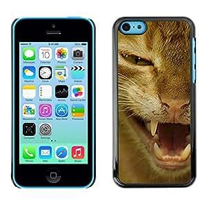 TopCaseStore / la caja del caucho duro de la cubierta de protección de la piel - Orange Shorthair American Cat Hissing - Apple iPhone 5C