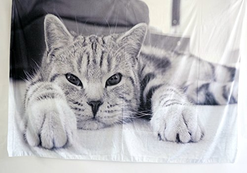 QNJins Kitten Wall Hanging by, Little Cat Lies on the Curtain,Home Decor