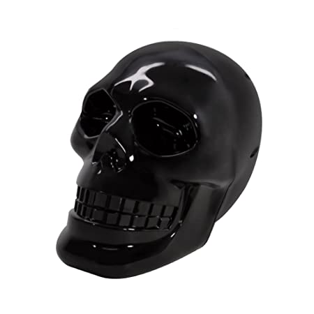 Review Rechargeable Portable Stereo Skull