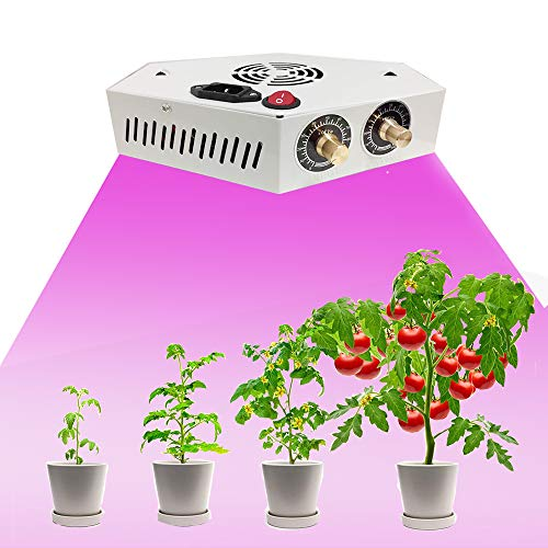 1000W LED Grow Light for Indoor Plant, Adjustable Full Spectrum Plant Light Growing Lamps with Veg and Bloom for Basement Planting(White)
