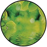 Printing Round Rug,Leaves,Leaves in Water Spa Open Your Chakra with Nature Meditation Ecological Monochrome Photo Mat Non-Slip Soft Entrance Mat Door Floor Rug Area Rug For Chair Living Room,Green