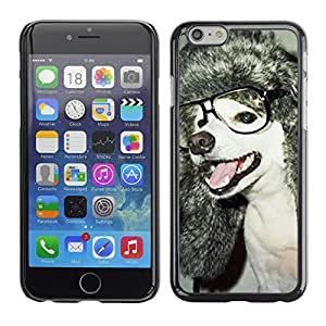 """Hot Style Cell Phone PC Hard Case Cover // M00100605 nerd animals glasses dog // Apple iPhone 6 4.7"""""""