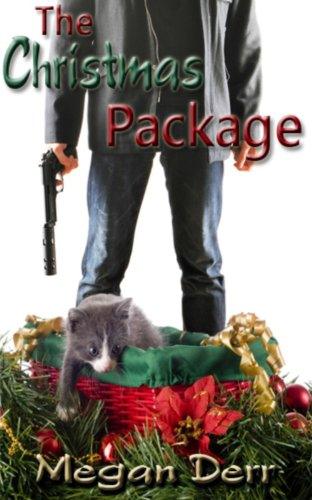 The Christmas Package (Delivery with a Smile Book 2)