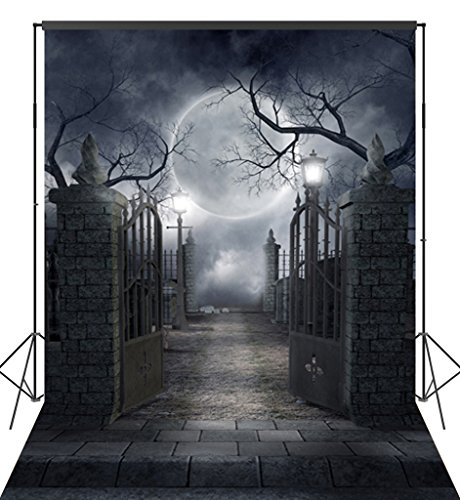 Ouyida Halloween Horror Night 6X9FT CP Pictorial cloth Photography Background Computer-Printed Vinyl Backdrop TP17 (Halloween Photo Backdrops)