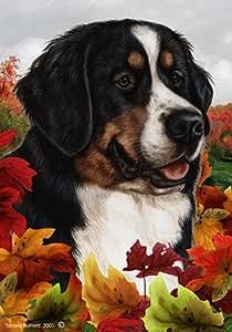 Perro de montaña bernés–Tamara Burnett Fall Leaves Jardín banderas
