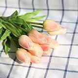 COOBL Artificial silk flower High grade decorative tulip flower wedding bouquet bride holding garlands vine DIY Floral art plant bride Home Decor(20pcs) (champagne)