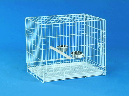 Bird Transport Cage – Large Transport Cage, My Pet Supplies