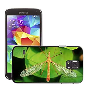 Etui Housse Coque de Protection Cover Rigide pour // M00116161 Schnake Schneider Insectos Animales // Samsung Galaxy S5 S V SV i9600 (Not Fits S5 ACTIVE)
