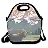 Grand Teton National Park - Moose And Mountains Lunch Bags Reusable Insulated Lunch Tote Boxes For Women Men Adults Kids