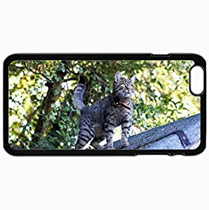 Customized Cellphone Case Back Cover For iPhone 6 Plus, Protective Hardshell Case Personalized Cat Roof View Surprise Eyes Mustache Black
