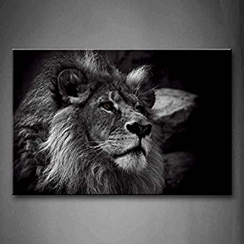 Amazoncom Black And White Lion Head Portrait Wall Art Painting