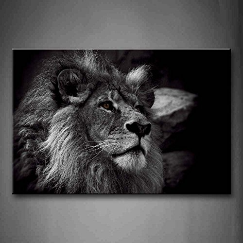 Lion Head Pictures - Black And White Gray Lion Head Portrait Wall Art Painting Pictures Print On Canvas Animal The Picture For Home Modern Decoration
