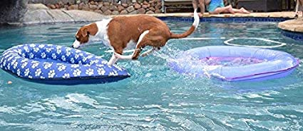 Vercico Inflatable Pool Float for Adult Dogs and Puppies Blue Large Contemporary Pet Dog Cat Swimming Pool Float Ride on