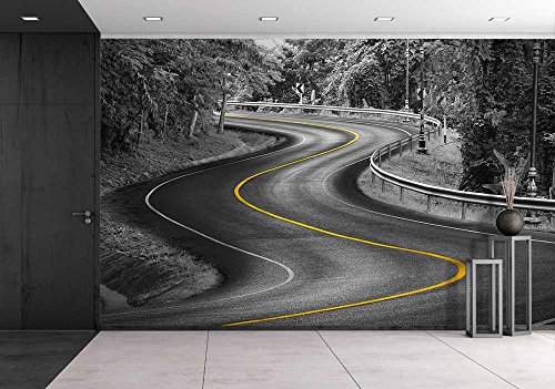 Black and White Curve Way of Asphalt Road in Nature with Yellow Line