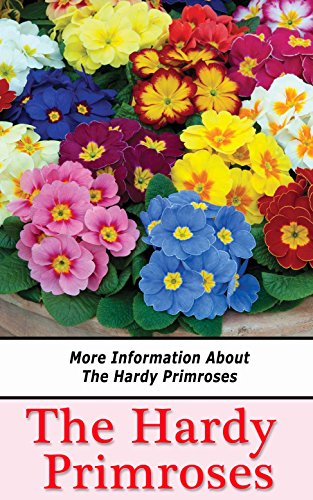 (The Hardy Primroses: More Information About the Hardy Primroses)