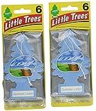 Little Trees Cardboard Hanging Car, Home & Office Air Freshener, Summer Linen