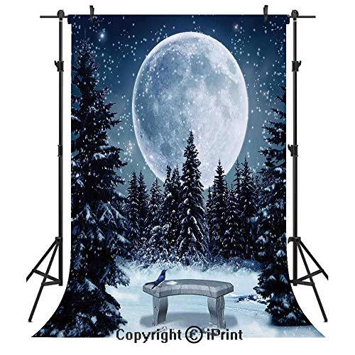 Winter Decorations Photography Backdrops,Dreamy Winter Night with a Big Full Moon and Stars Lghts The Darkness,Birthday Party Seamless Photo Studio Booth Background Banner 5x7ft,Blue White
