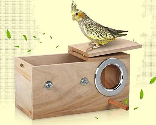 Rainsflower Cockatiel Breeding Nesting Bird Avery - Cage Box