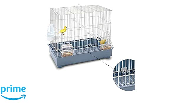 Imac Cova 42: Amazon.es: Productos para mascotas