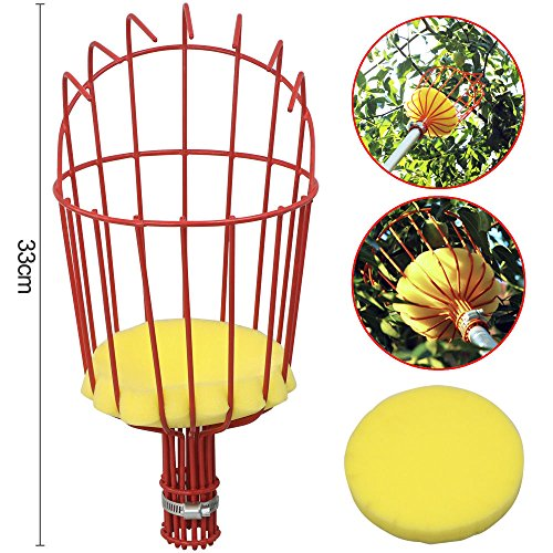 Fruit Picker Basket Fresh Orange Apple Plum Pear Peach for Broom Pole Stick M3 ()
