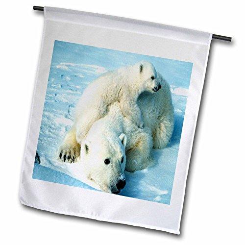 Playful Polar Bear (3dRose fl_98619_1 Playful Polar Bear N Her Mom Garden Flag, 12 by 18-Inch)