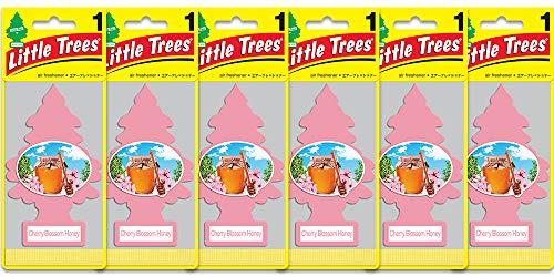 Little Trees Air Fresheners, Singles, Cherry Blossom Honey (Pack of 6)