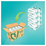 Pampers Baby-Dry Nappies Monthly Saving Pack - Size 5, Pack of 144 Bild 1
