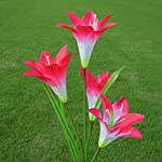 2-Pcs-Lily-Flower-Solar-Powered-Garden-Stake-s-Artificial-Flowers-LED-Light-Bulb