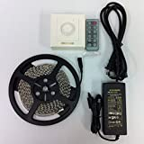 LED Light Strip Kit - 16.4ft 600LEDs 3528 Non-waterproof SMD LED Strip Lights + LED Wall Dimmer + Power Supply (Daylight)