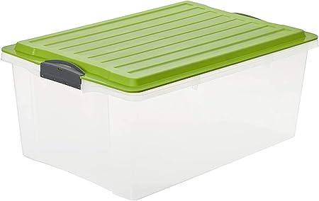 Rotho Compact, Caja de almacenamiento 38l con tapa, Plástico PP sin BPA, verde, transparente, A3, 38l 57.0 x 40.0 x 25.0 cm: Amazon.es: Hogar