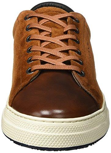 Uomini Gant Stelle Sneaker Marrone (cognac)