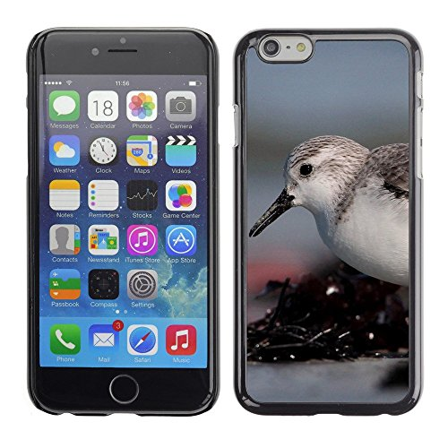 Hülle Case Schutzhülle Cover Premium Case // F00003120 Vogel // Apple iPhone 6 6S 6G PLUS 5.5""
