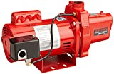 Red Lion RJS-100-PREM 602208 Premium Cast Iron Shallow Well Jet Pump for Wells up to 25 ft
