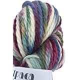 Hand Dyed Baby Alpaca Yarn, Hand Painted Mezmorize, Heavy Worsted Weight, 100 Grams, 102 Yards, 100% Baby Alpaca