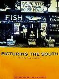 Picturing the South, Ellen Dugan, 0811813436