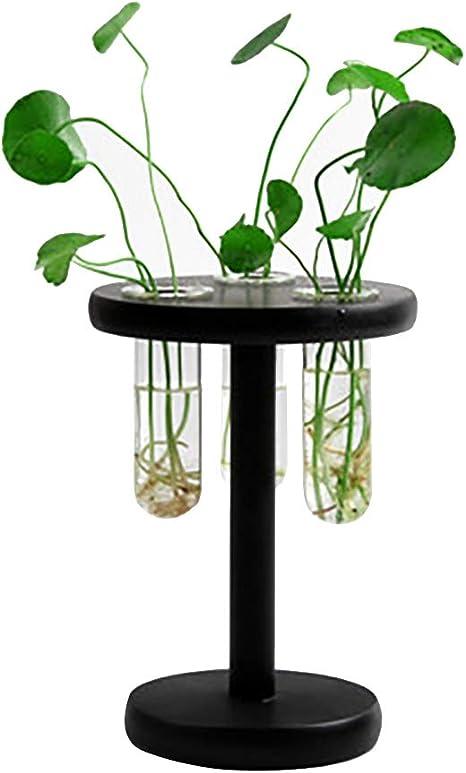 Vintage Home Test Tube Vase Glass Flower Terrarium Pots for Hydroponic Plant