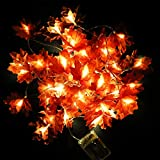 R.HORSE 20 Feet 40 LEDs Fall Maple Leaf Light for Home Decorations, Lighted Fall Garland, Maple Leaf String Lights for Halloween and Thanksgiving Day (Warm White)